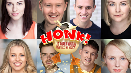 The cast of 'Honk!' the musical