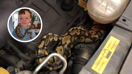 A nine-year-old's missing Python was found during an MOT under the bonnet of his family's car.