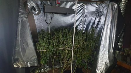 Man arrested after cannabis 'factory' found as firefighters tackle tackling house blaze