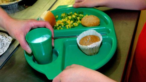 File photo dated 28/08/09 of a pupil collecting their school dinner as almost all primary schools in