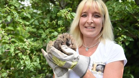Claire Buckle from Haverhill is campaigning to get a hedgehog crossing sign on a busy road nearby P