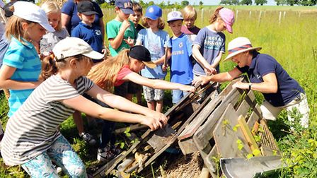 Glebeland Primary School pupils visiting a field close to Clinks Care Farm to celebrate Care Farm We
