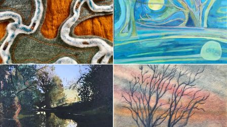 Work by four local artistsis on display at the Babylon Gallery's 'Edge of the Fens' exhibition in Ely.