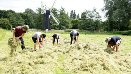 Visitors to the museum can learn more about agricultural activities such as harvesting