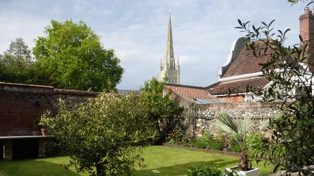 View over top of walled garden looking towards the spire of Norwich Cathedral