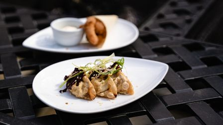 Nibbles of scampi and duck gyoza at The Bildeston Crown