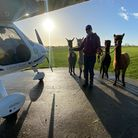 Wilderley farm resort in the Waveney valley is home to NEBO Air, the world's first zero emission 'airline'.