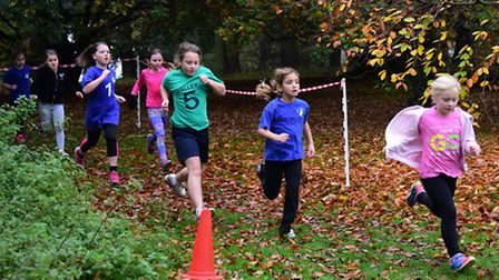 The Norwich School Sport Partnership cross country event at Earlham Park. The Year 4 girls race. Pic