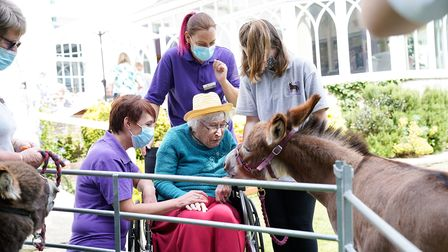 Residents from the care home loved the visit from the donkeys
