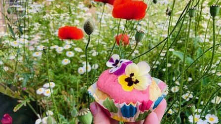 Vegetable muffin topped with beetroot hummus pictured outside with flowers