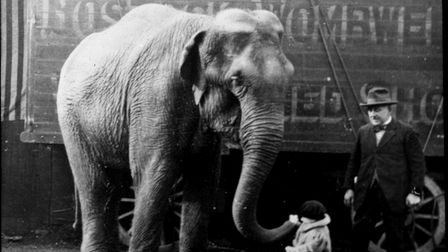E.H. Bostock and a young girl with an elephant from Bostock & Wombwell's Circus and Menagerie in 192