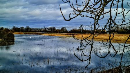 Ely photographer Nicky Still's image of the lake at Ely country park