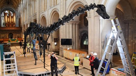 Dippy the Diplodocus at Norwich Cathedral. Picture: DENISE BRADLEY