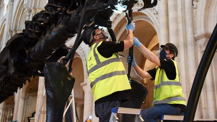 Andy Wahl, left, lead technician, puts one of Dippy the Diplodocus' ribs in place at Norwich Cathedr