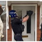 Police dog Bruce lent a helping paw as arrests were made in Cambourne for suspected drug dealing