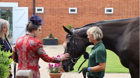 The Princess Royal met with the stunning race horses at the race course