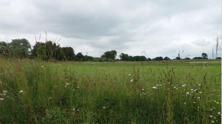 field in badwell ash