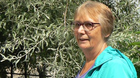 This week to take on our questions is town councillor Vivienne Joslin.