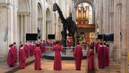 The Norwich Cathedral choristers celebrate the arrival of Dippy the Diplodocus in the nave before th
