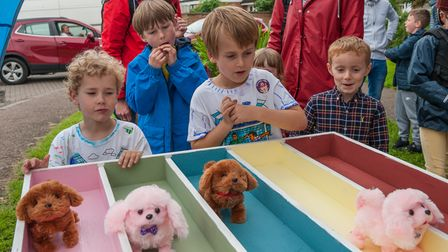 Four schoolchildren watch pink and brown toy dogs race on multicoloured tracks in Rayne