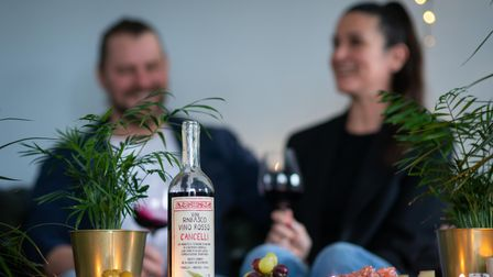 Two people blurred out. In the foreground, houseplants and wine.