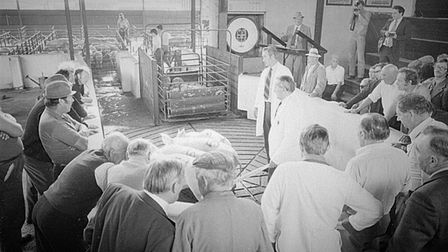 The last livestock sale at Ely Cattle Market, 1981