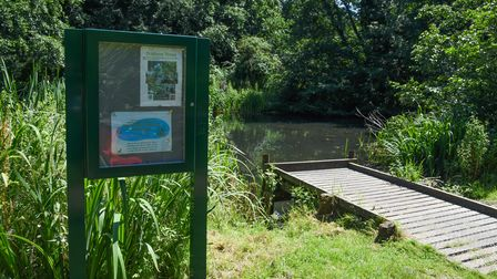 The newly-restored pond off Suters Drive in Thorpe Marriot. Picture: Danielle Booden