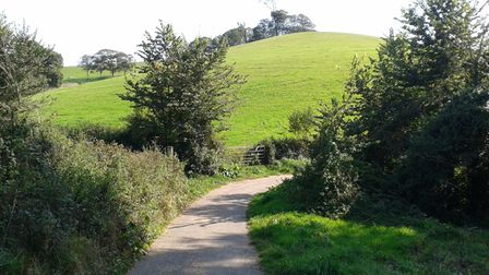 View from Park Lane by the river Otter between Otterton and White Bridge towards Budleigh Salterton