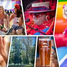 Woodstockwick Festival launches at the Woodbastwick Estate in Norfolk this summer.