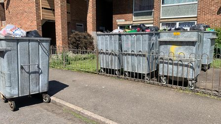 Pictures in June of the bins outside the flats.