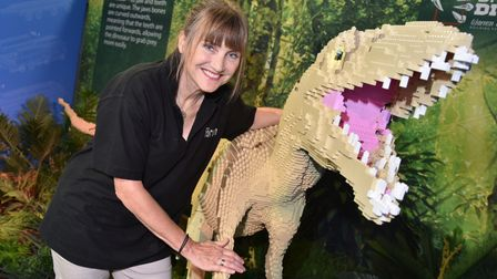 Jayne Evans, The Forum event producer, with the Masiakasaurus at the Brick Dinos LEGO exhibition.