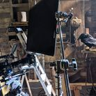 Filming for the Tiny Creatures Netflix series in the Ember Films Hingham studios.