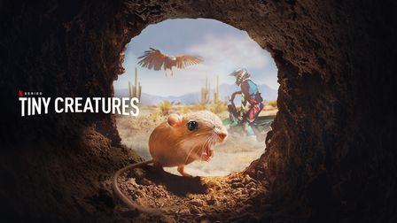 The Tiny Creatures series created for Netflix by Hingham-based Ember Films.