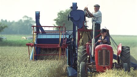 Billy Hammond atStalham vintage combine day in September 1999,with grandson Will driving the tractor
