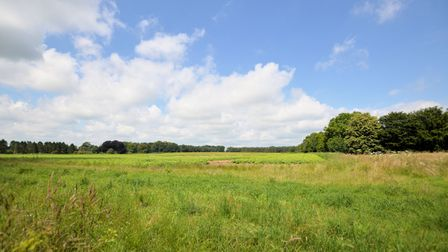 View over flat Norfolk fields under a big bright blue sky with trees in the distance