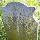 The grave for Dinah Maxey and Elizabeth Smith at Hainford: both women were poisoned