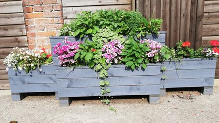 One of the new planters in Binham.