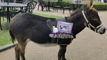 Pippin delivering Maudes Makes & Bakes to the Assembly House