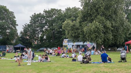 Residents with picnics on the grass this year's Teddy Bears' Picnic in Great Dunmow, Essex