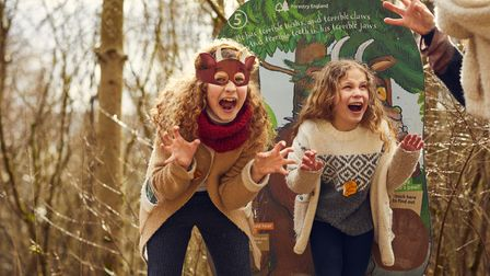 The Gruffalo Spotters Trail returns to Thetford Forest.