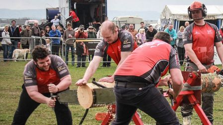 The lumberjack sports competition organised by the BLSA is new this year, with a mix of climbing, speed chopping and sawing.
