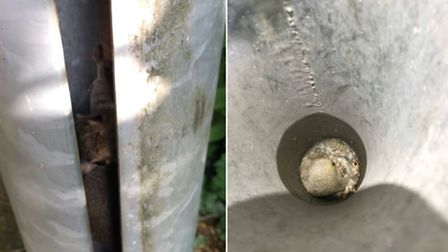 An RSPCA inspector rescued a squirrel who was trapped inside a lamppost in Cambridgeshirere.