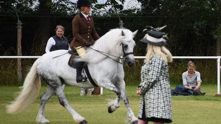 Spectators watch the judging of the ridden mountain and moorland class at the Norfolk Equestrian Sho