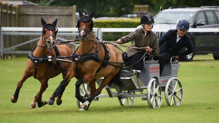 Competitors in the Scurry Driving Championship at the Norfolk Equestrian Show, at the Showground. Pi