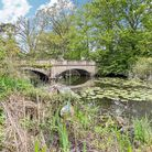 Idyllic monet-style bridge over a river with lily pads surrounded by trees