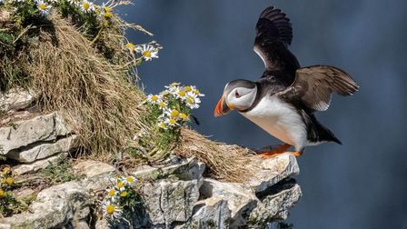 Dan Starling won the national Rotary Club young photographer competition