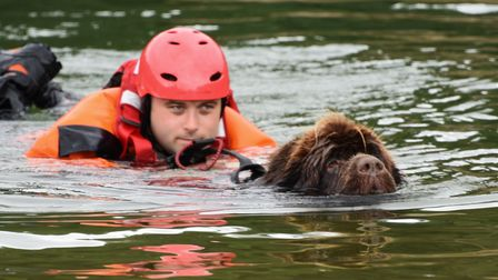 Dake Colk of the King's Lynn Fire and Rescue team is rescued by Cookie of the Fenland Working Newfou