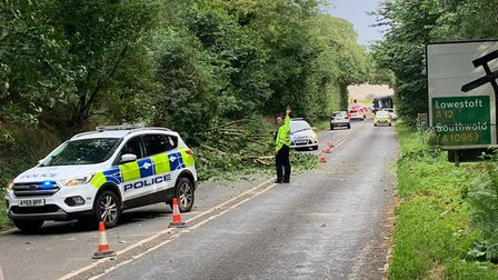 A fallen tree is partially blocking the A12 between Blythburgh and Henham