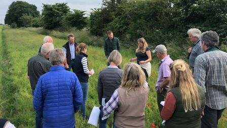 Members of the Breckland Farmers Wildlife Network discussing the nature potential ofcultivated arable margins