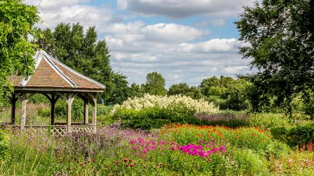 The gardens at Pensthorpe Natural Park.